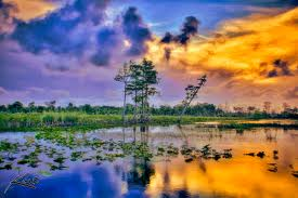 sunset_wetlands1